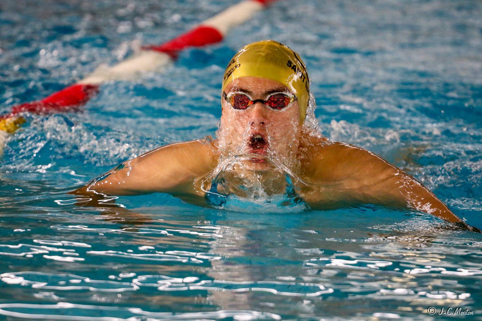 natation-saint-raphael- bassin3